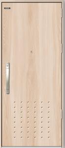 Cửa thép chống cháy phủ Laminate HS-STEEL 904